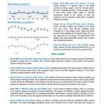 LBI Newsletter December 2014 v1_4