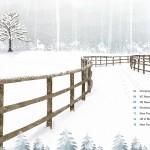 LBI winter 2014_2